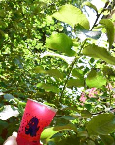 monsterslush-slush-flamingo-vegan